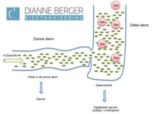 Fodmap dieet uitgelegd door dietist Leeuwarden